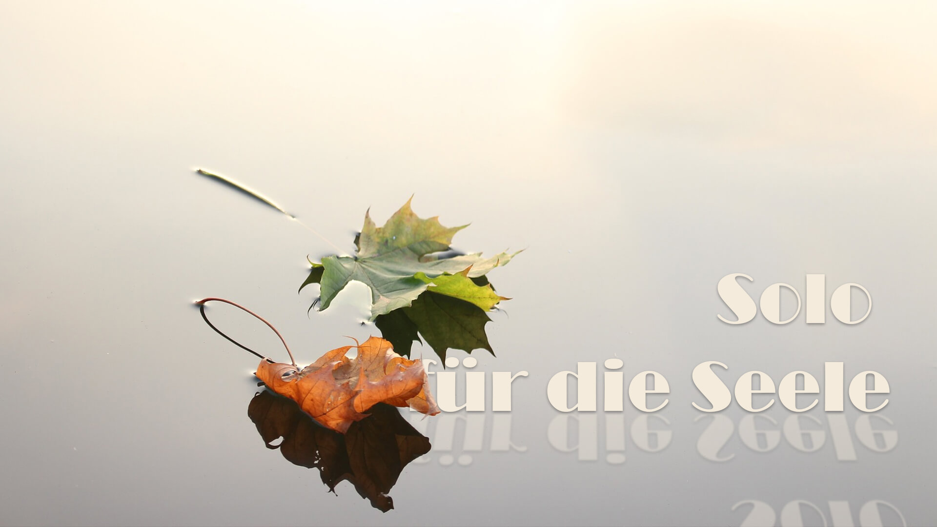 solo-fuer-die-seele